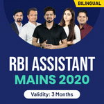 RBI Assistant Mains 2020 Video Course
