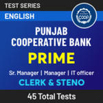 Punjab Cooperative Bank Senior Manager, Manager, IT officer and Clerk 2021 Online Test Series