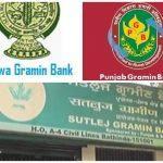 Government Amalgamates 3 RRBs Into A Single Bank