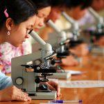 International Day Of Women And Girls In Science: 11 February