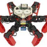 AntBot, The First Walking Robot To Navigate Without GPS, Developed