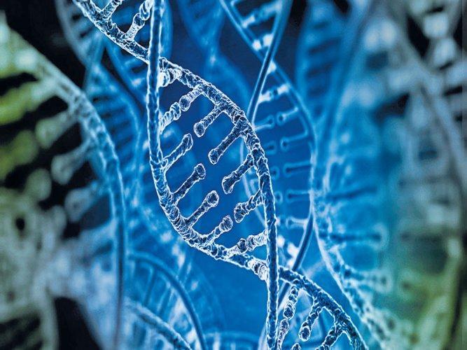 CCMB and CDFD sign MoU to improve genetic disease diagnostics_40.1