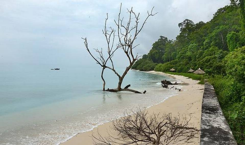 12 Indian beaches in the race to crest the 'Blue Flag' challenge_40.1