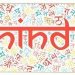 Hindi Diwas celebrated on 14 September