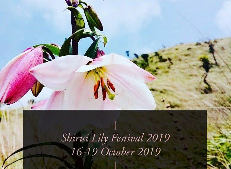 Shirui Lily Festival inaugurated in Manipur_40.1