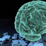 IIIT Hyderabad create first ever Indian Brain Atlas