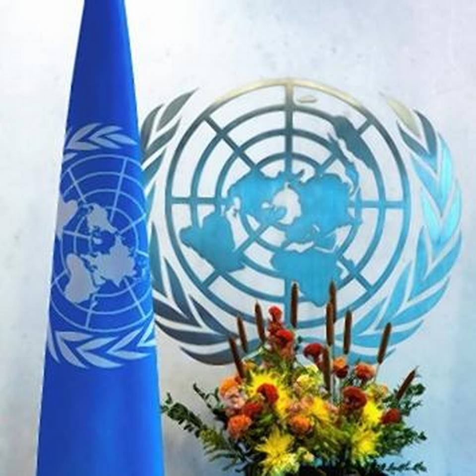 India to contribute $13.5 mn for UN development activities for 2020_40.1
