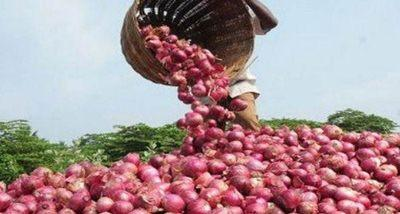 MMTC to import 11000 MT of Onions from Turkey_40.1