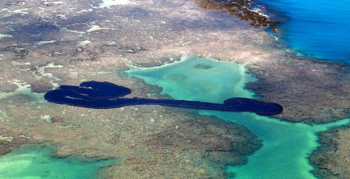 Emergency protocols activated in the Galapagos Islands after fuel spill_40.1