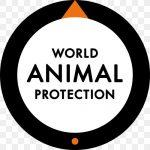India ranks second in Global Animal Protection Index 2020