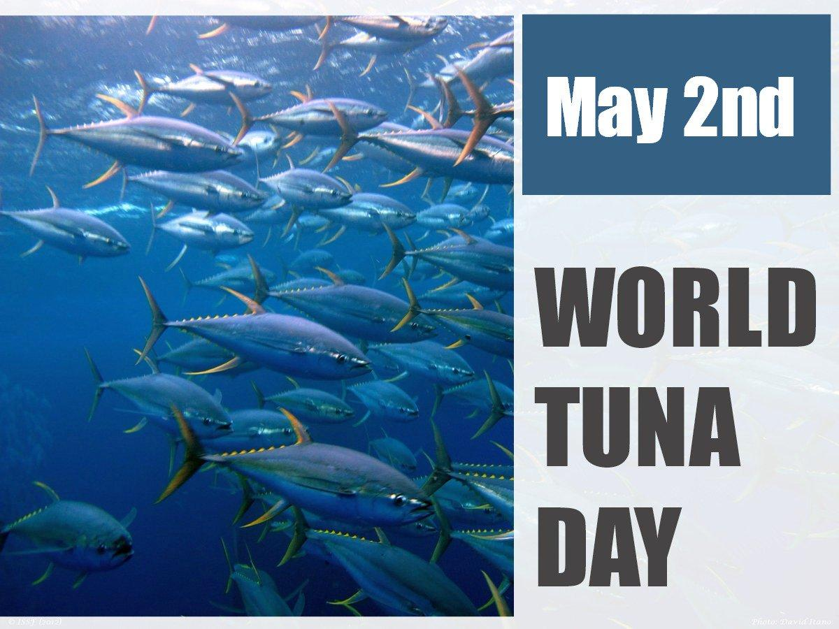 World Tuna Day observed globally on 2 May_40.1