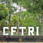 Spirulina groundnut Chikki developed by CFTRI to boost immunity