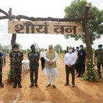 Amit Shah launches CAPF's nationwide tree plantation drive