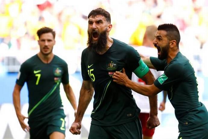 Former Socceroos captain Mile Jedinak retires from sport_40.1