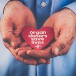 World Organ Donation Day: 13 August