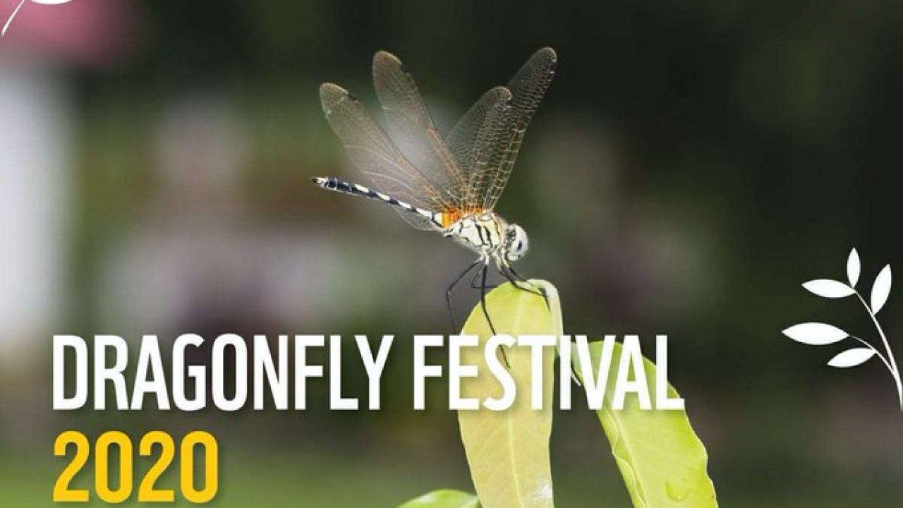 Kerala's 1st-ever Dragonfly Festival_40.1
