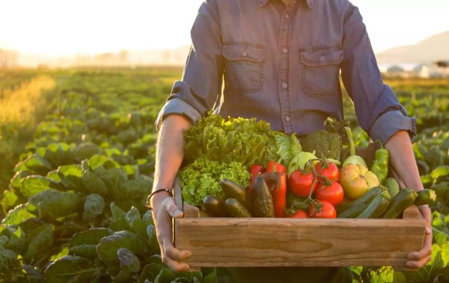 Organic Food Processing Unit inaugurated in Uttar Pradesh_40.1