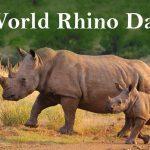World Rhino Day: 22 September
