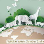 Wildlife Week is celebrated from 2nd to 8th October