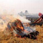 SC appoints former judge to monitor steps to prevent stubble burning
