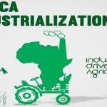 Africa Industrialization Day: 20 November