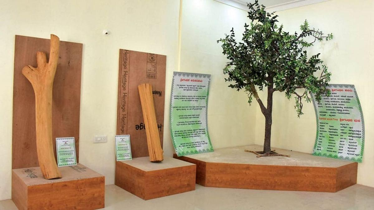 Karnataka's Mysuru to Get India's First Sandalwood Museum_40.1