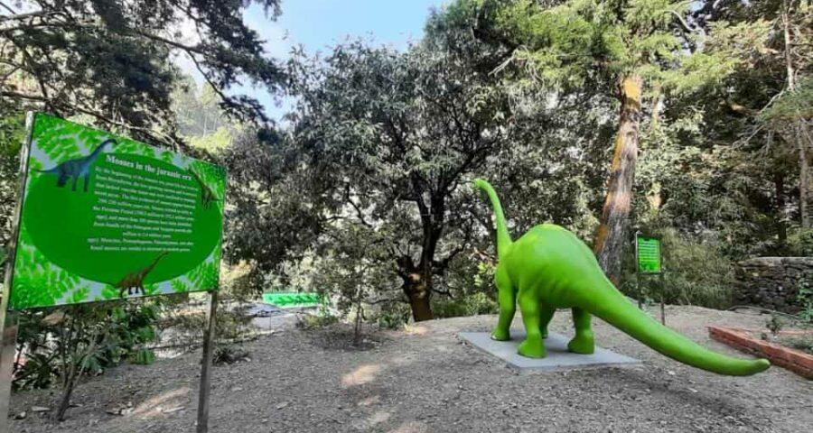 India's first 'Moss Garden' comes up in Nainital district_40.1