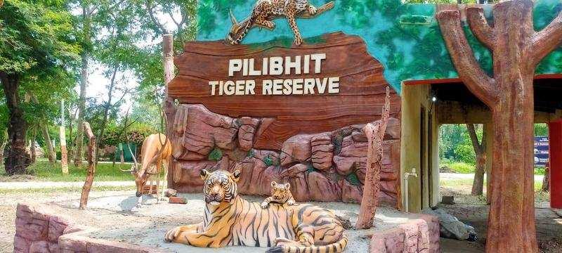 Pilibhit Tiger Reserve gets global award for doubling tiger population_40.1