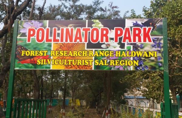 India's first pollinator park opens in Uttarakhand_40.1