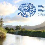 World Wetlands Day: 02 February