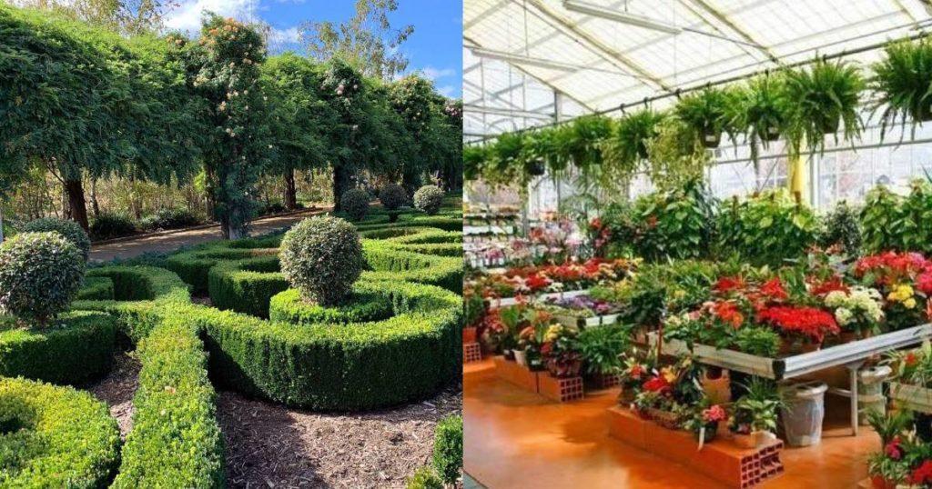 Uttarakhand sets up Botanical Garden to conserve species of Shivalik range_40.1