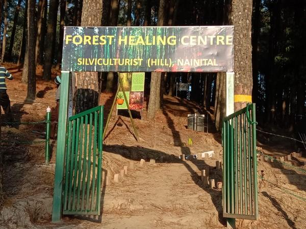 India's first forest healing centre inaugurated in Uttrakand's Ranikhet_40.1