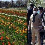 J&K Lieutenant Governor Manoj Sinha inaugurates Tulip Festival