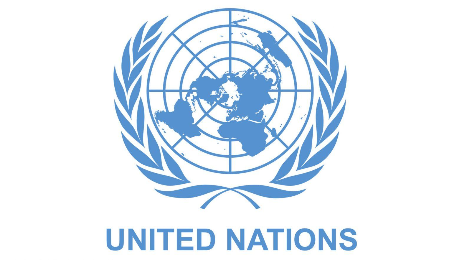 India elected to 3 bodies of U.N. Economic and Social Council_40.1