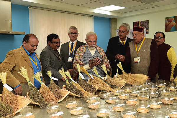 RM Sundaram appointed as Director of Indian Institute of Rice Research_40.1