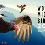 World Migratory Bird Day: 08 May
