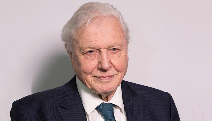 Sir David Attenborough named COP26 People's Advocate|স্যার ডেভিড অ্যাটেনবোরোকে সিওপি 26 পিপলস অ্যাডভোকেট নামকরণ করা হয়েছে_40.1