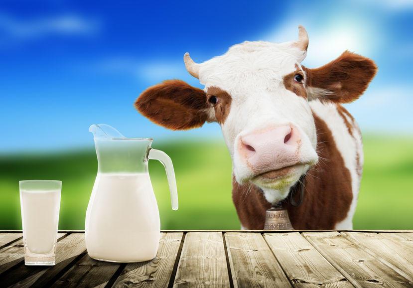 World Milk Day celebrated on 01st June   1লা জুন বিশ্ব দুগ্ধ দিবস পালিত হয়_40.1