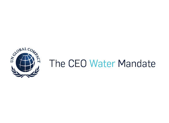 NTPC Ltd. Joins UN's CEO Water Mandate for Water Conservation   जल संवर्धनासाठी एनटीपीसी लिमिटेड संयुक्त राष्ट्रसंघाच्या सीईओ वॉटर म्यानडेटसोबत सामील झाले_40.1