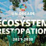 United Nations Decade on Ecosystem Restoration: 2021-2030