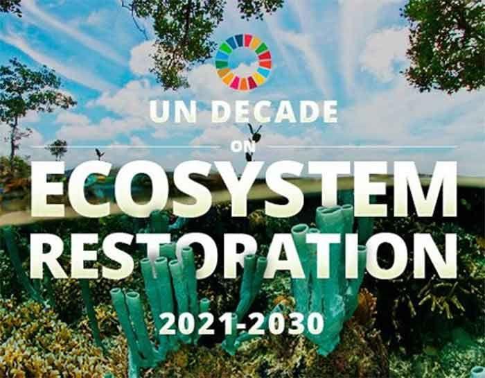 United Nations Decade on Ecosystem Restoration: 2021-2030_40.1