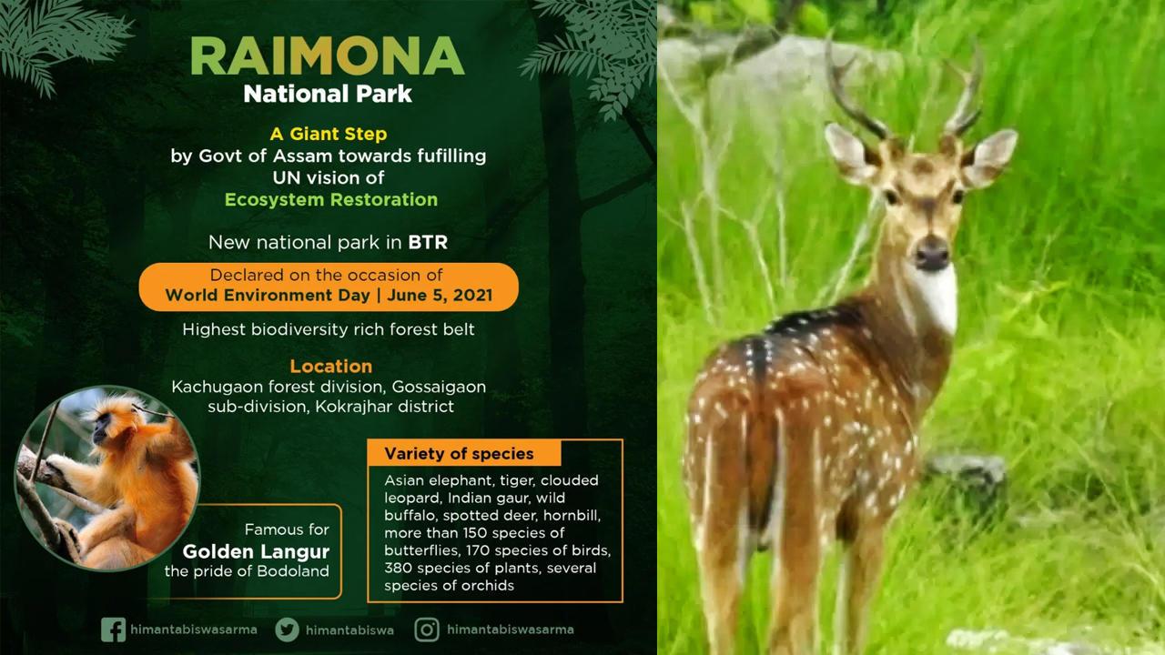 Assam govt names Raimona reserve forest sixth national park_40.1