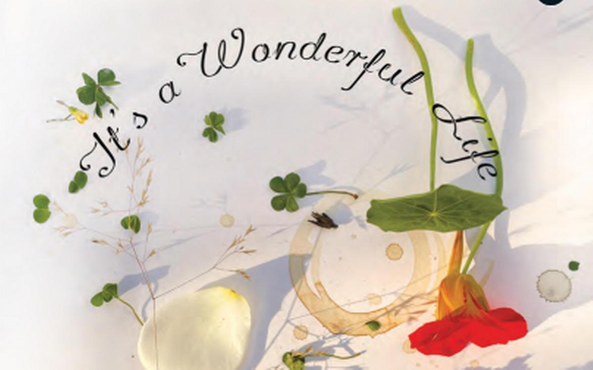 Ruskin Bond's book titled 'It's a wonderful Life' launched | রাসকিন বন্ডের লেখা 'It's a wonderful Life' নামক বইটি প্রকাশ করা হল_40.1
