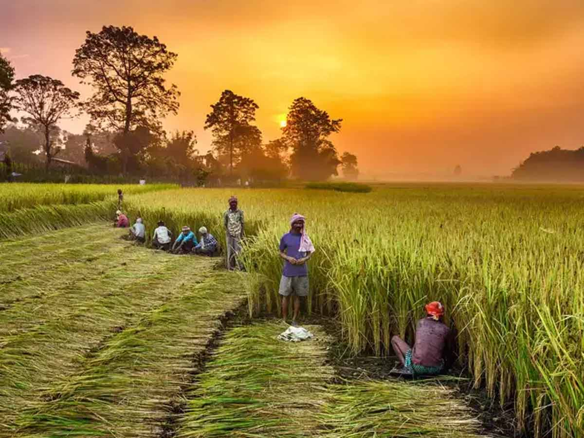 Daily Current Affairs In Marathi-17 July 2021 | महत्वपूर्ण दैनिक चालू घडामोडी-17 जुलै 2021_50.1