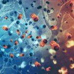 United Kingdom reports cases of 'Norovirus' infection