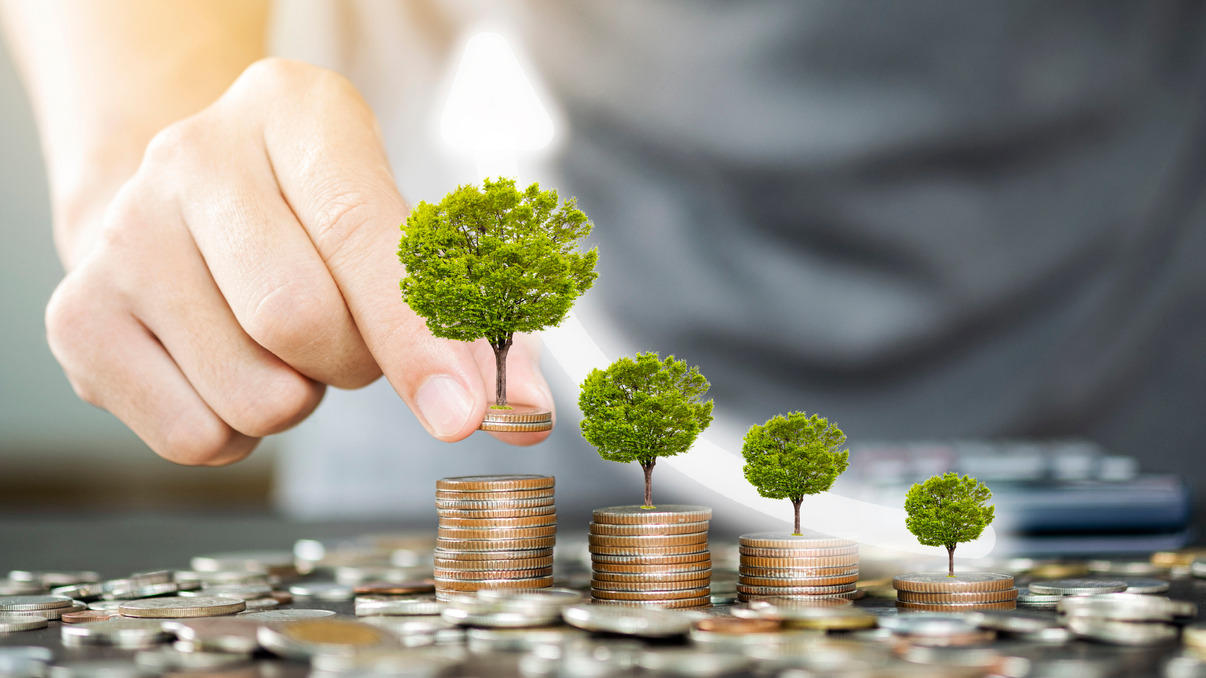 HDFC unveils 'Green & Sustainable' fixed deposit_40.1