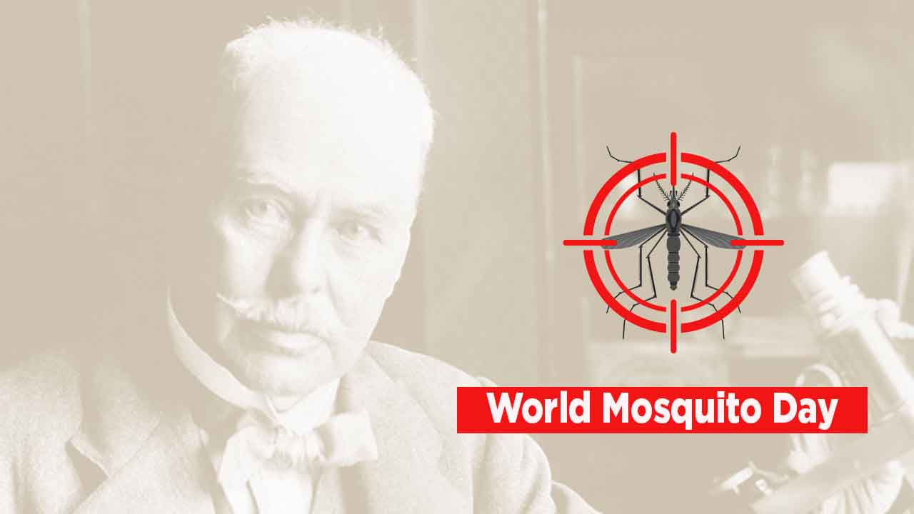 World Mosquito Day observed on 20th August_40.1