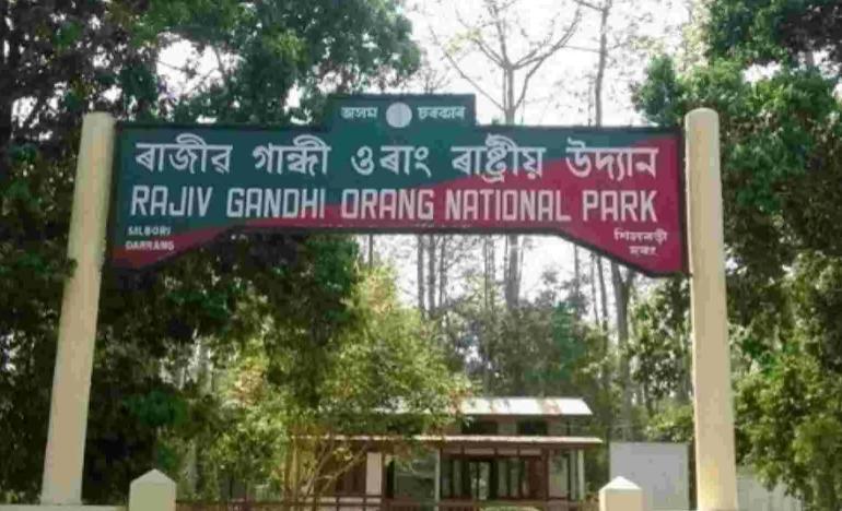 Assam cabinet decides to remove Rajiv Gandhi's name from Orang national park_40.1